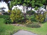 Mainlands: Landscape Maintenance Services