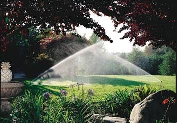 Irrigation Services Palm Atlantic Landscape Maintenance